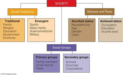 the structure of social a study in social theory with special reference to a of recent european writers classic reprint books image gallery sociology social