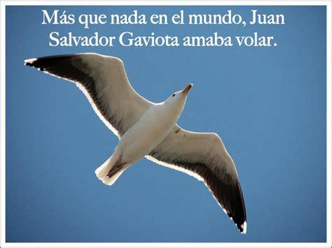 juan salvador gaviota image gallery juan salvador gaviota