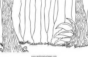 exotischer urwald ausmalen und wald urwald 0 gratis malvorlage in diverse malvorlagen verschiedenes ausmalen