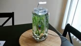 win a Self Cleaning Half Gallon Betta Tank from No Clean Aquariums