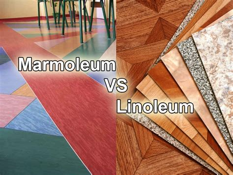 Which Is Better Laminate Or Linoleum - marmoleum vs linoleum choosing one of the two popular