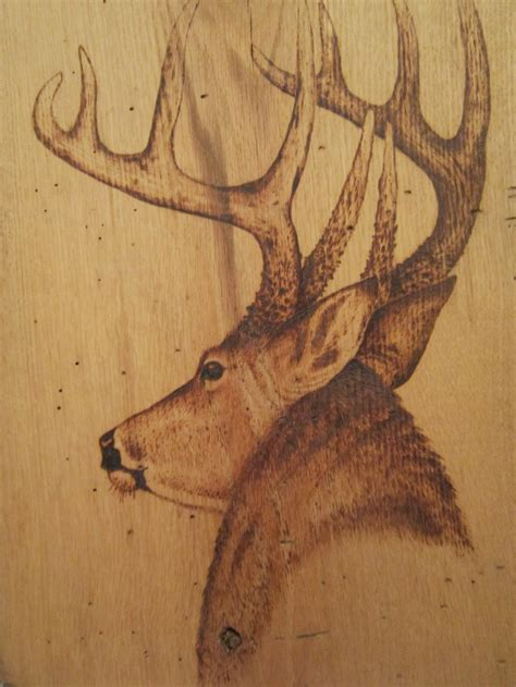 deer patterns and wood wall design on pinterest 17 best images about gourds wood burning carving on
