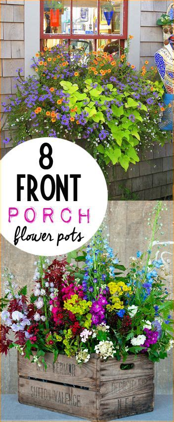 plants for front garden ideas best 25 front porch flowers ideas on garden