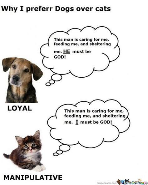 difference between and dogs difference between cats and dogs by samarth meme center