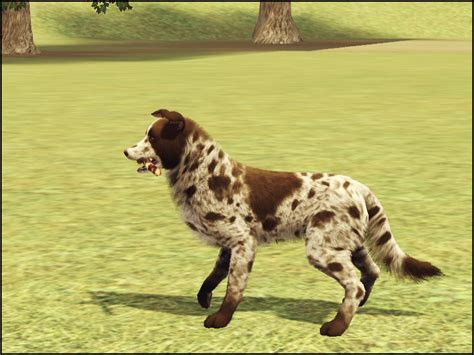 the lucky puppy mod the sims lucky the
