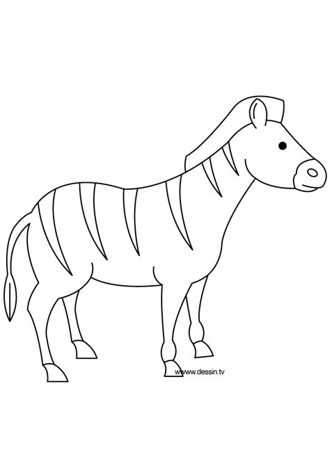 sketch of zebra without stripes coloring pages