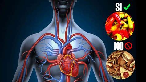 alimentos  mejorar la circulacion sanguinea rapidamente