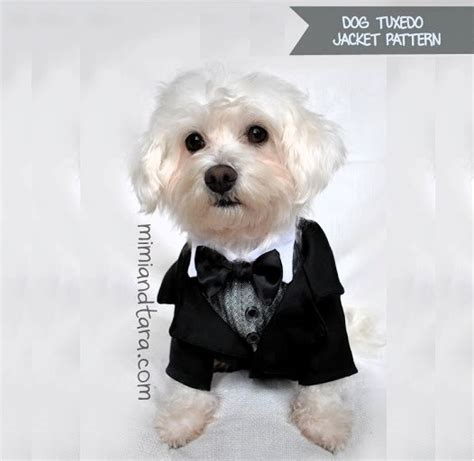 puppy tuxedo tuxedo jacket patterns premium pattern