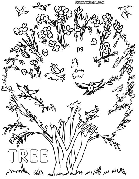coloring pages of birds in trees tree coloring pages coloring pages to download and print
