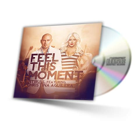 download mp3 pitbull feel this moment remix feel this moment pitbull ft christina aguilera mp3