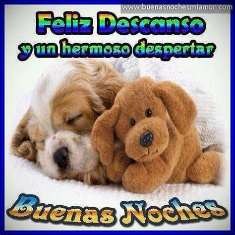 imagenes lindas de amistad de buenas noches las mejores imagenes bonitas de buenas noches amigos