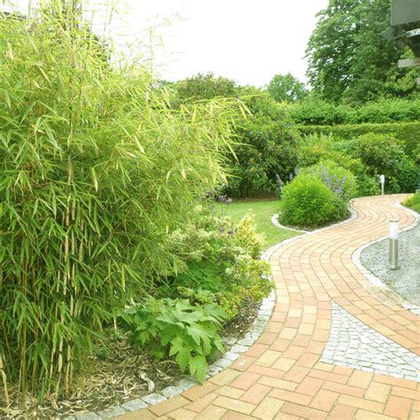 Gartenweg Mit Bambus