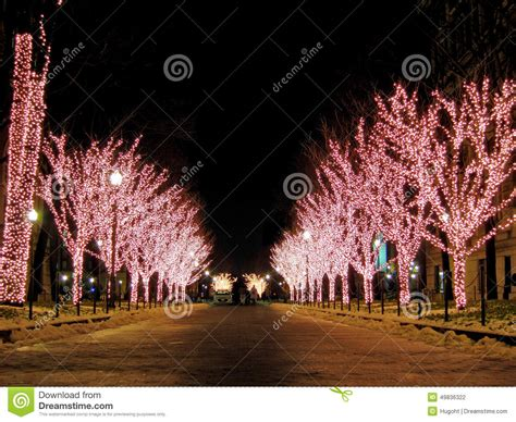 lit up lit up trees stock photo image of decoration
