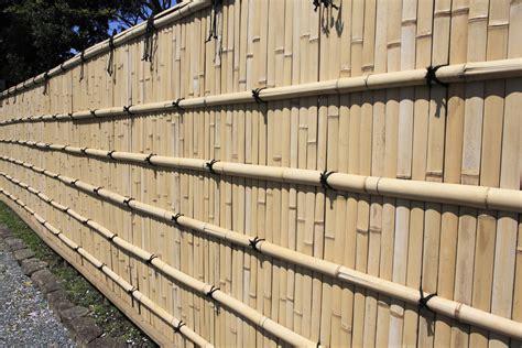 canisse en bambou 7198 canisse en bambou atouts et prix ooreka