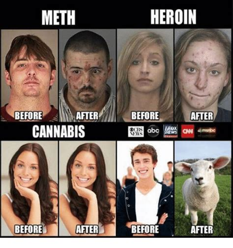 Crystal Meth Meme - meth before after cannabis after before heroin before