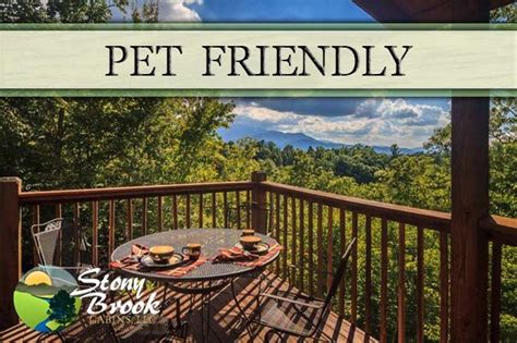 1000 images about pet friendly cabins in gatlinburg on