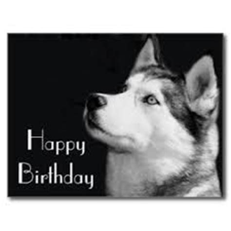 42 Best Images About Husky On Pinterest Huskies Puppies White Siberian Husky And Cake Tutorial Husky Cake Template