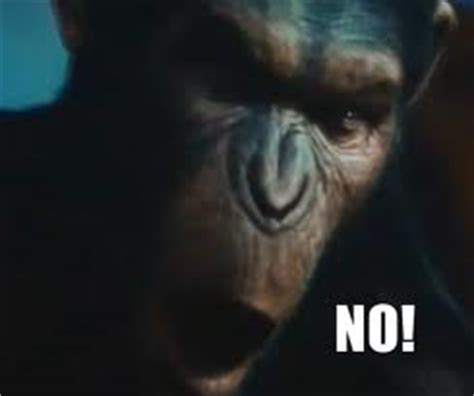 Planet Of The Apes Meme - caesar says no know your meme