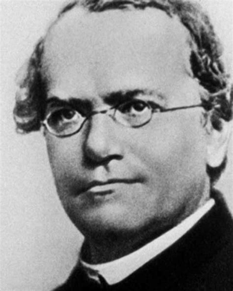 biography gregor mendel adele mini biography biography