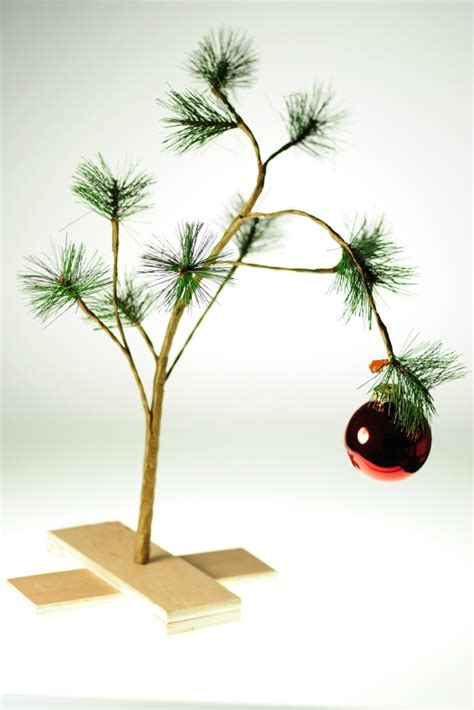 real charlie brown christmas tree ask umbra which tree is the greenest grist