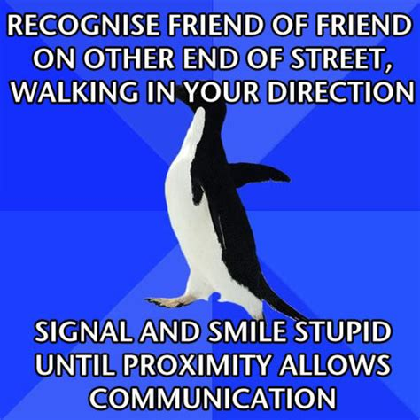 Socially Awkward Penguin Meme - socially awkward penguin meme www imgkid com the image
