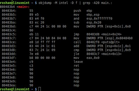 assembly tutorial x86 linux primer on program disassembly and intel x86 assembler