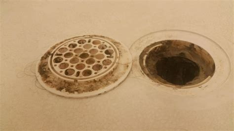 Shower Drain Covers by What Of Glue For Shower Drain Home Improvement