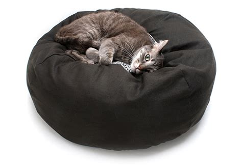 human sized dog bed human sized dog bed if ever i wished for a cat bed to