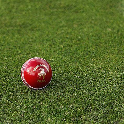 swing bowling cricket cricket ball swing cricket ball official kookaburra