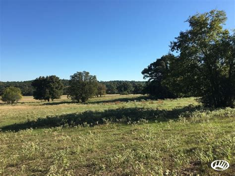 land and timber pasture land and timber in northeast larue