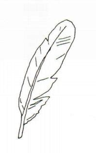 feather clipart free download clip art free clip art
