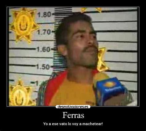 El Ferras Meme - el ferras meme 28 images para mi eres un chamaco cag n