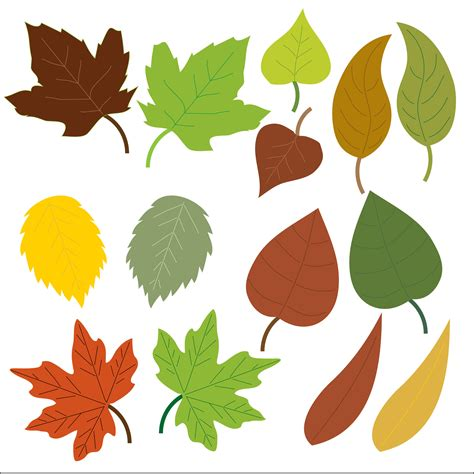 leaf clipart leaves clipart free stock photo domain pictures