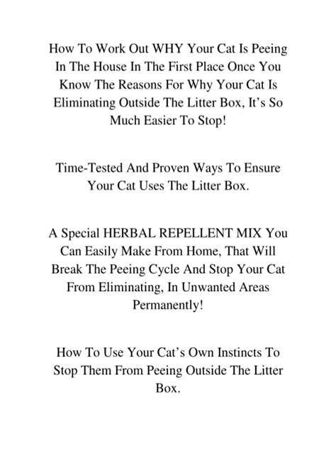 how to get cat urine out of a rug water damage restoration remove cat from carpet