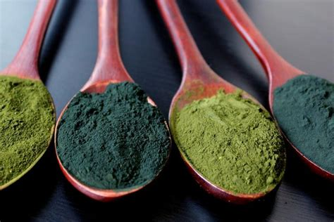 Cracked Cell Wall Chlorella - fermented cracked cell wall chlorella better than spirulina