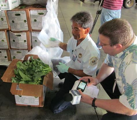 hawaii quarantine department of agriculture plant quarantine inspectors featured on hawaii news now