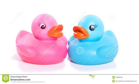 Bow Window Prices a pink and a blue plastic duck stock photo image 12828130