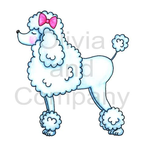 poodle rubber st pink poodle drawing poodle with pink bow