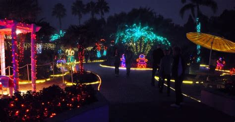 christmas light displays in florida freesensenews 7 best dazzling christmas light displays in