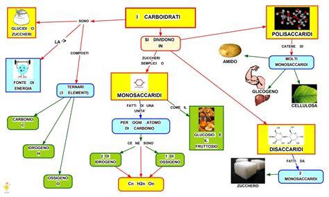 ricerca sull alimentazione umana mappa concettuale carboidrati