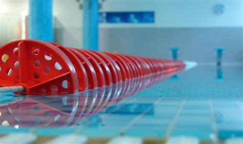 One From The You Are A Photo Pool by What Makes A Pool Fast Coach Rick Mighty Tritons Swimming