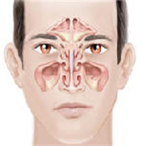 patologie dell orecchio interno studio medico cantore otorinolaringoiatria ed audiologia