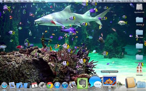 wallpaper aquarium mac desktop aquarium free on the mac app store
