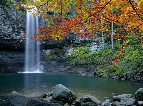 Cloudland State Park Cabin Rentals by Hiking Cloudland State Park Chattanooga
