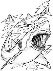 free printable sea coloring pages free printable coloring pages for