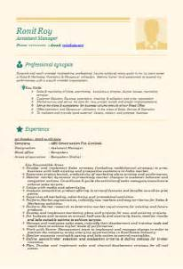 Professional amp beautiful resume sample doc for experienced and