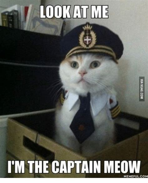 Meow Meme - look at me i m the captain meow memeful com meme on sizzle