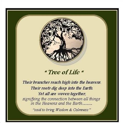 meaning of the tree of life google search school
