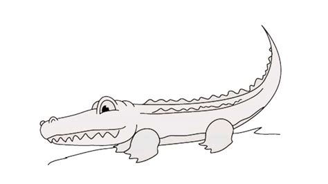 draw  alligator    draw