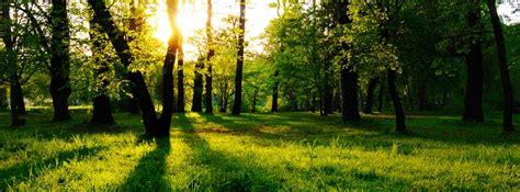 imagenes bonitas de paisajes para portada portada de paisajes naturales para facebook imagenes